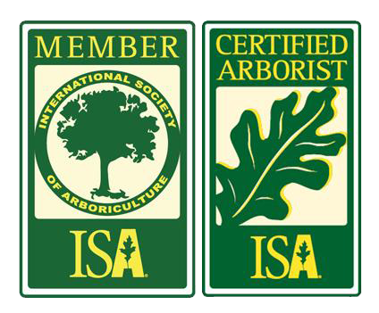 Nelson Tree Specialist - Serving Silver Spring MD
