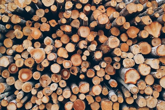 Bundle of firewood, Maryland-Washington, DC, Nelson Tree Specialist